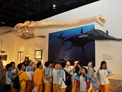 小朋友们看到「蛇颈龙」的模样,都非常兴奋地讨论著.